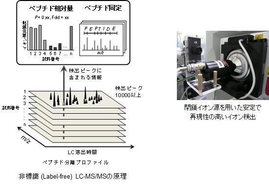 LC-MSMSとイオン源